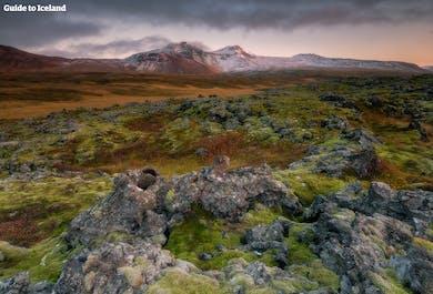 7 dni, pakiet | Spersonalizuj swoje wczasy na Islandii