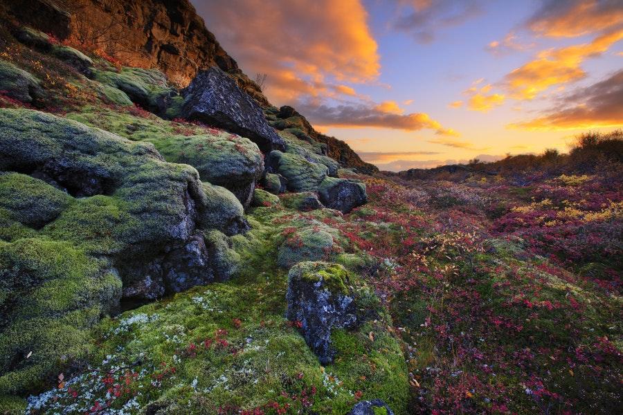 6月午夜的冰岛黄金圈辛格维利尔国家公园