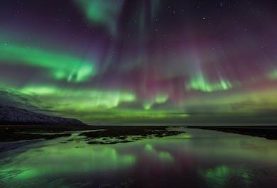 Aurores boréales depuis un bateau | Au large de la capitale islandaise