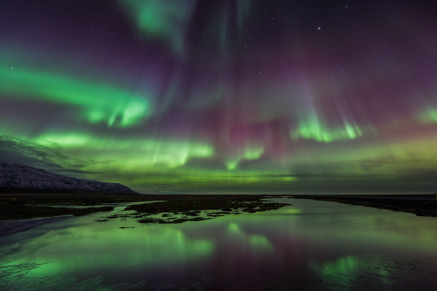 The aurora borealis, green and purple, dancing over the rocky coast of Iceland in winter.