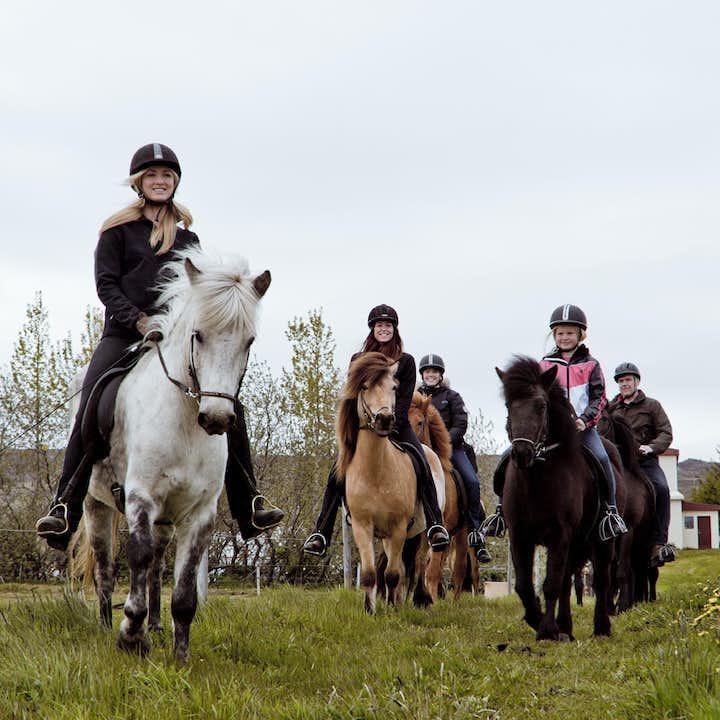 阿克雷里1小时骑马旅行团