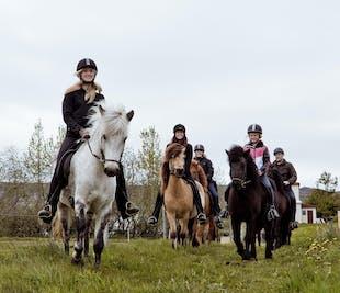 乗馬ツアー1時間|アークレイリ集合