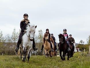 Horse Riding Tour from Akureyri
