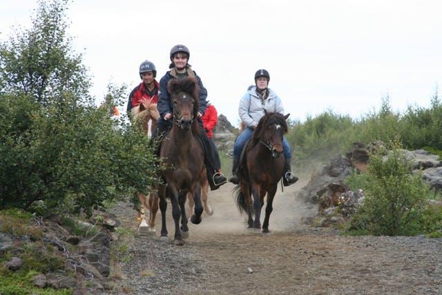 Viking Horseback Tour | Helgafell or Heiðmörk