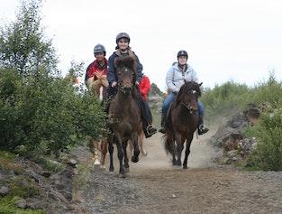 Viking Horseback Tour   Helgafell or Heiðmörk