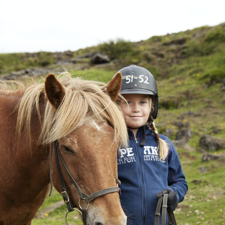 Icelandic horses get on excellently with children.