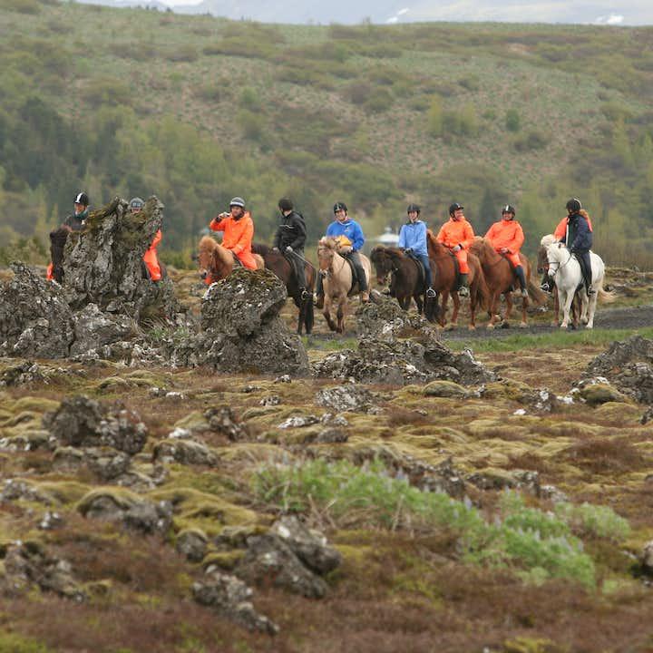 在冰岛马背上领略熔岩原的奇妙景象