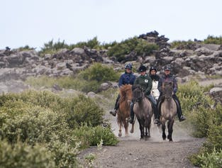 Viking Express Horseback Tour | Helgafell or Heiðmörk