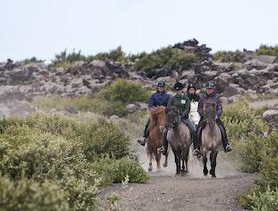 Viking Express Horseback Tour   Helgafell or Heiðmörk