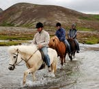 Ford rivers, pass lava fields, and travel through forests on an Icelandic horse.