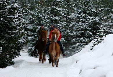 Balade à cheval à Heidmork   Pour cavaliers expérimentés
