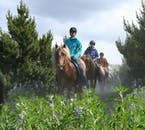 This horseback riding tour will take you through greenery many don't even know that Iceland has.