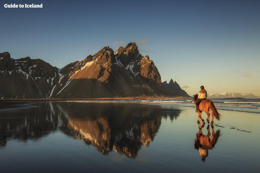 Balade à cheval sur une plage déserte le long d'un fjord en Islande