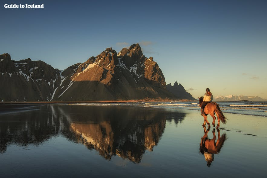 Horse riding in the deserted fjords of Iceland