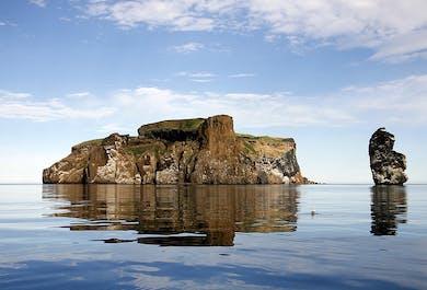 Drangey Island Tour | Puffin Watching and Hiking