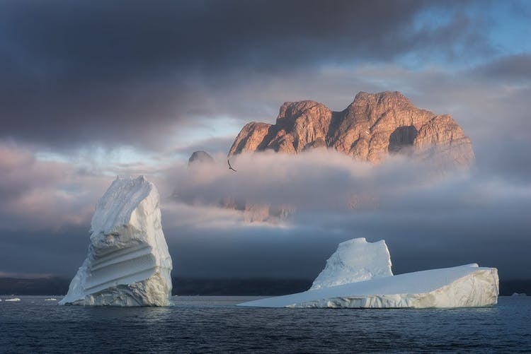 Icebergs off the coast of the Bear Islands in Greenland, with steep coastal cliffs looming behind the fog.