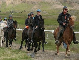 Horse Riding & Gullfoss, Geysir & Þingvellir