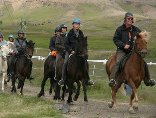 Horse Riding & The Golden Circle