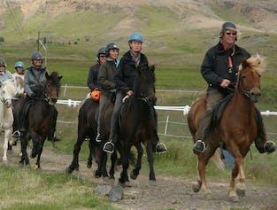 승마와 골든 서클 | 필수 아이슬란드 투어