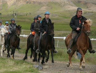 The Golden Circle and horse-riding day tour | Classic Icelandic experiences