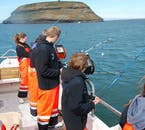 The islands in Húsavík's bay have many puffins in summer, helping to add to your sea-angling tour.