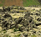 The Buðahraun lava field surrounds Snæfellsjökull glacier, covered in green moss throughout summer.