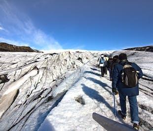 南海岸の滝と氷河ハイキングの旅 健脚者向け