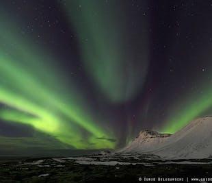 Chasse aux aurores boréales en soirée   Autocar depuis Reykjavik