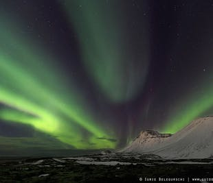 Chasse aux aurores boréales en soirée | Autocar depuis Reykjavik