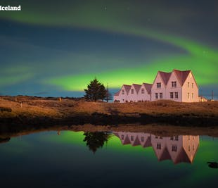 Golden Circle and Northern Lights | Live Tour with Audio Guide in 10 Languages