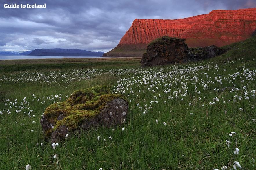 De rode gloed van de middernachtzon op de bergen in de Westfjorden van IJsland