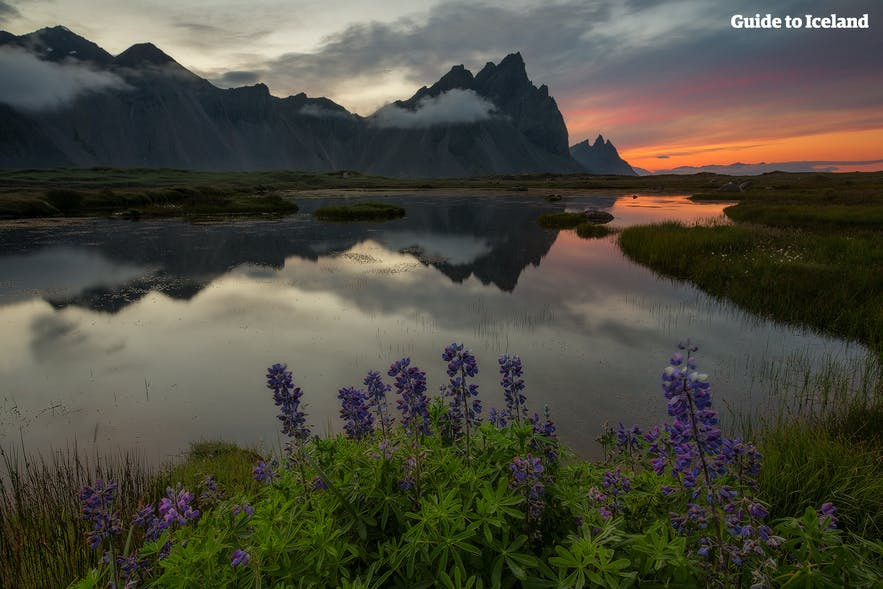 Vestrahorn mountain in east Iceland seen from Hvalnes