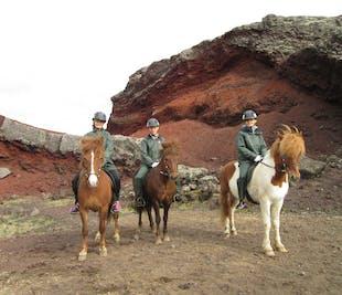 Horseback Riding from Reykjavik | Under the Midnight Sun