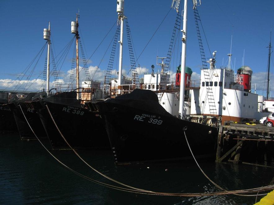 Statki islandzkich wielorybników.