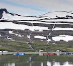 Kayaking through the Westfjords will expose you to amazing nature and maybe even wildlife like whales.