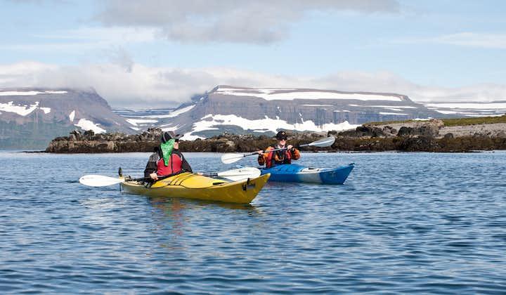 8-godzinna wycieczka przyrodnicza i kajakowa po wyspie Vigur na Fiordach Zachodnich z transferem z Isafjordur