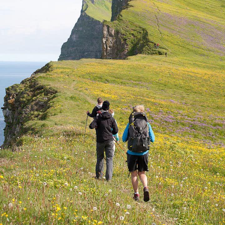 冰岛西峡湾两日游|豪斯川迪尔自然保护区+霍尼维克海湾+Hornbjarg悬崖