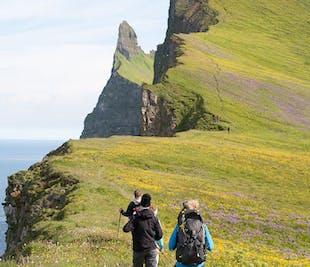 Tour de 2 días en los Fiordos del Oeste | Hornstrandir y Hornvík