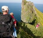 L'Islande est le lieu de nidification et de reproduction de nombreux oiseaux en été, et les Westfjords y jouent un rôle important.