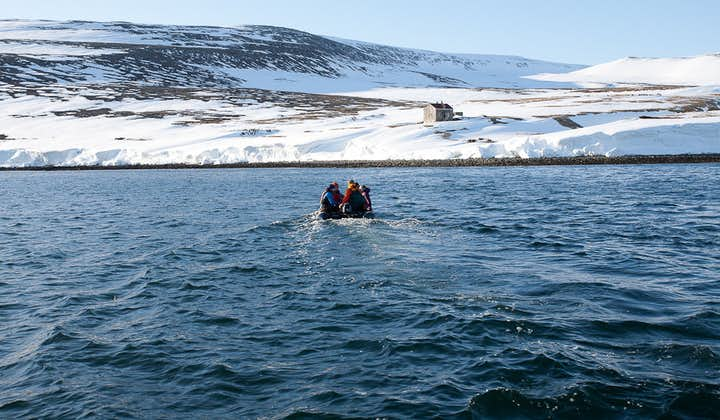 Zip through the waters of the Westfjords to reach your skiing slopes.