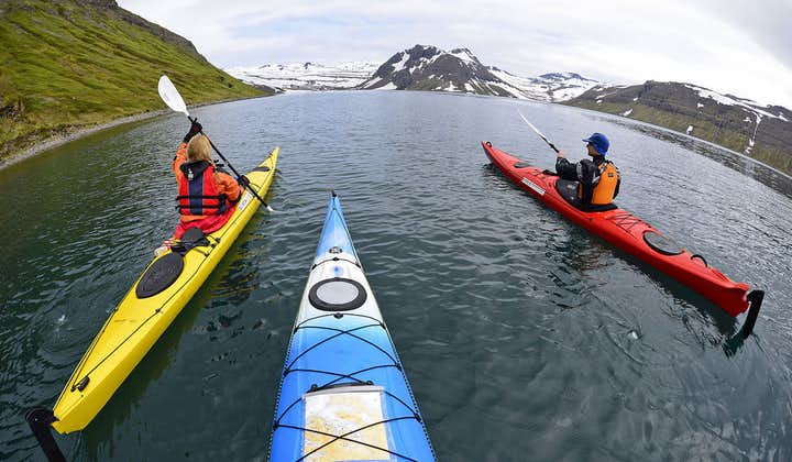 This camping and kayaking tour through the Westfjords will introduce you to the Hornstrandir Nature Reserve.