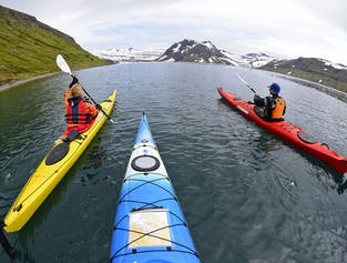 Paddle in the Wild of Hornstrandir | 6-Day Kayak Tour