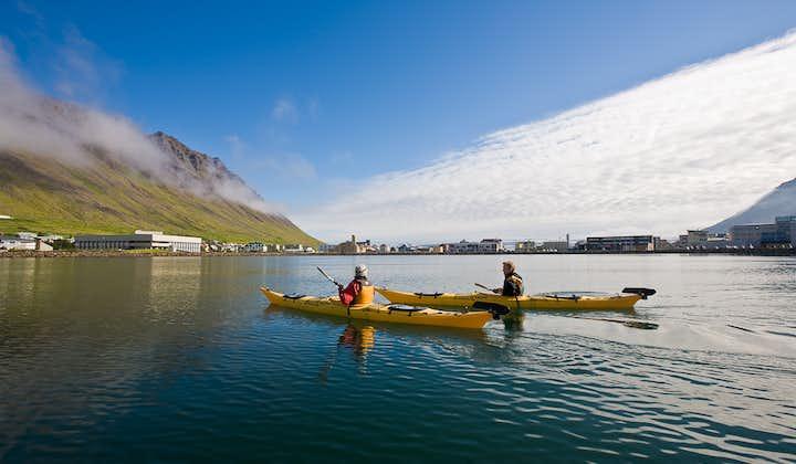 พายเรือคายัคที่ฟยอร์ดตะวันตก ประเทศไอซ์แลนด์
