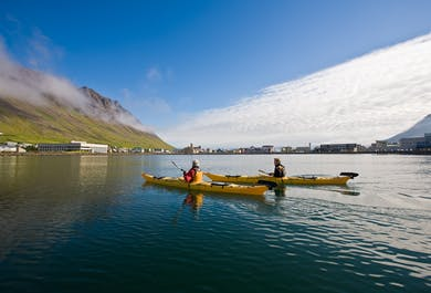 Kayaking in the Westfjords