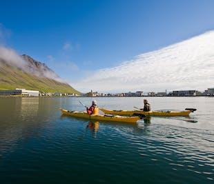 Paseo en Kayak en los Fiordos del Oeste | Salida desde Ísafjörður