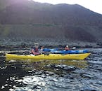 Keep your eyes on the coastline as you kayak through the Westfjords, as you may see seals.