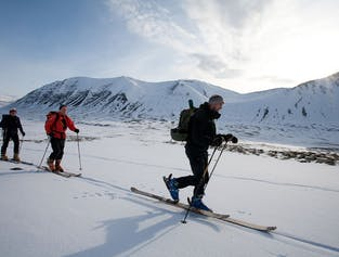 Peaks of Thieves   Skiing Day Tour in the Westfjords