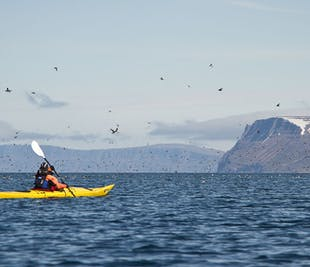Westfjords Kayaking Day Tour | Two Fjord Adventure