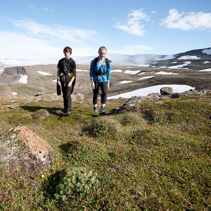 11-godzinna wycieczka piesza z przewodnikiem po Fiordach Zachodnich przez Hornstrandir z transferem z Isafjordur
