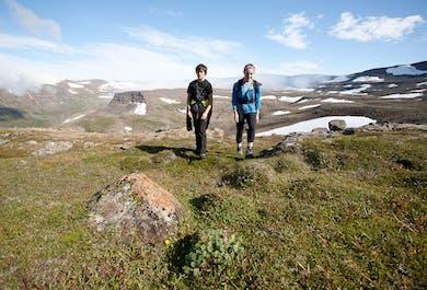 Journée à la réserve naturelle Hornstrandir - Départ d'Isafjordur